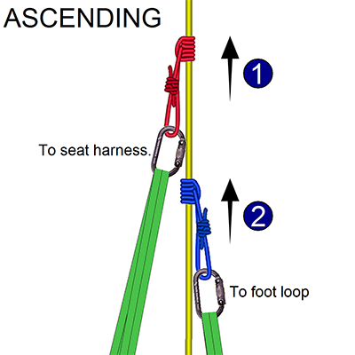 Rope Rescue Prusik Hitch
